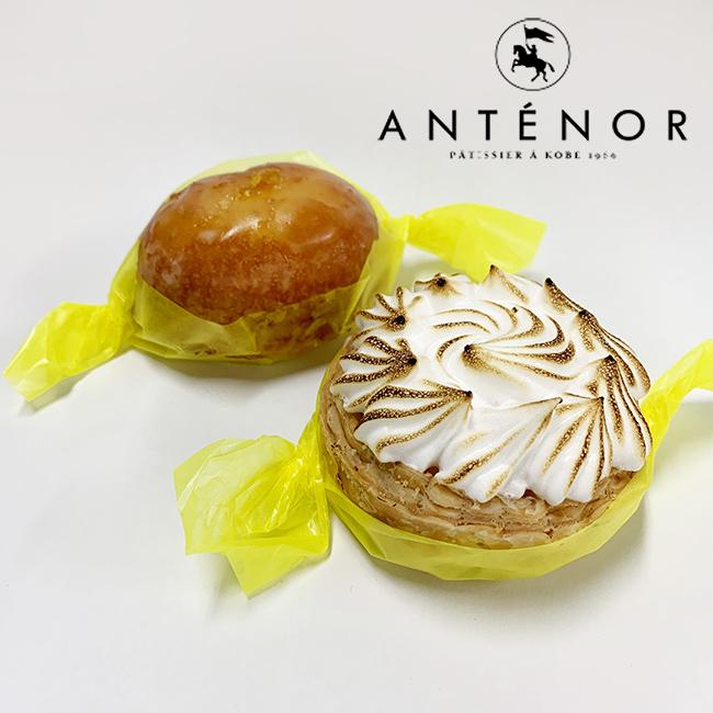 アンテノール レモンケーキ