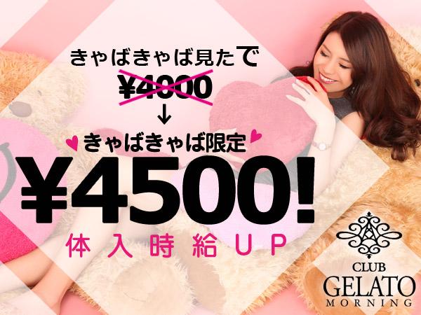 GELATO(朝昼)/歌舞伎町画像31389