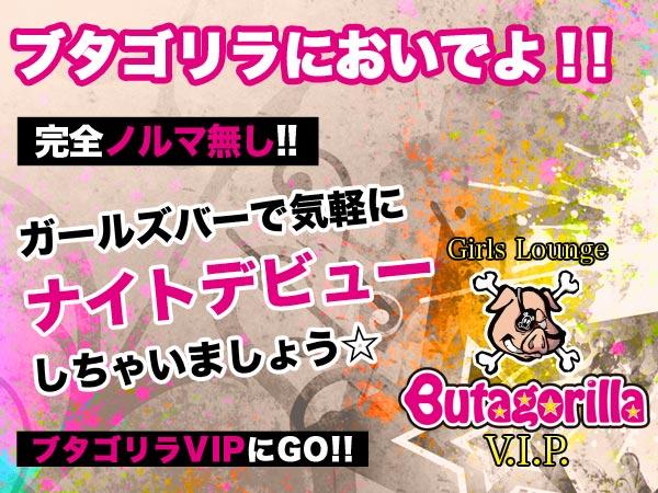 Butagorilla VIP/歌舞伎町画像26858