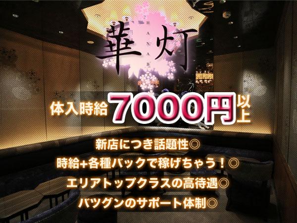 華灯/歌舞伎町画像31500