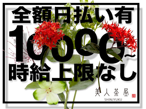 美人茶屋/歌舞伎町画像72349
