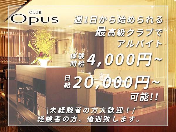 CLUB OPUS/すすきの画像104141