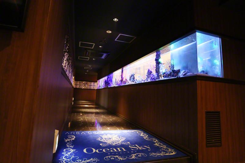 Ocean Sky/すすきの画像73161