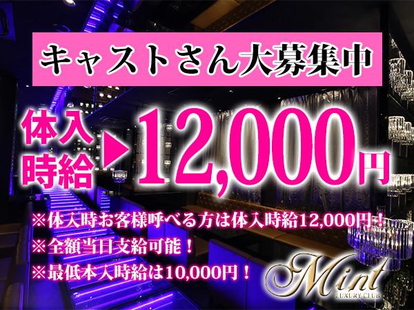 MINT/上野画像69980