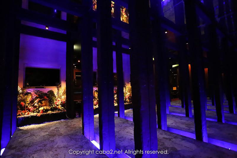 EXE/熊谷画像59032