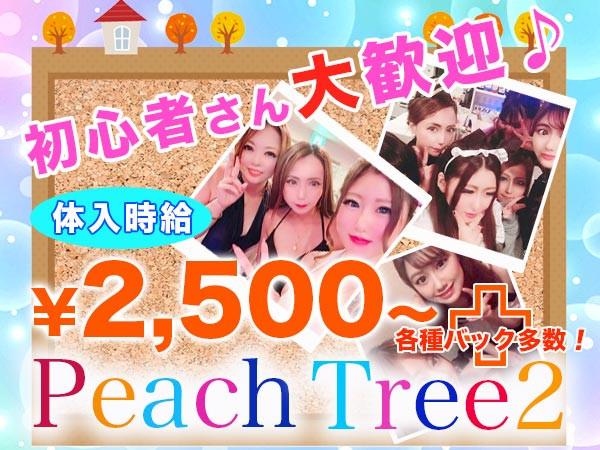 Peach Tree2 熊本植木店/植木町画像72896