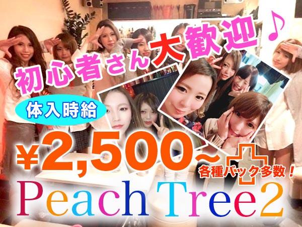 Peach Tree2 熊本大津店/大津町画像72905