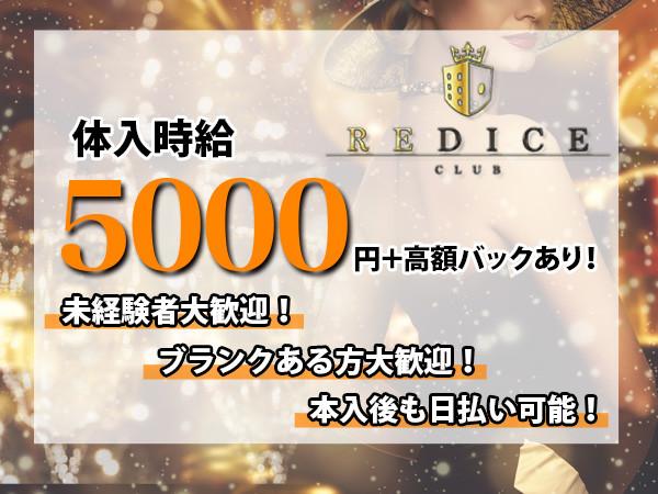 REDICE/歌舞伎町画像87759