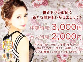 凰花/函館画像70583