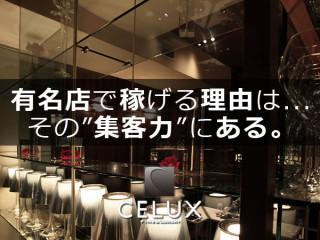 CELUX/歌舞伎町画像45270