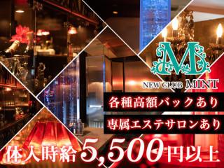 MINT/関内・桜木町画像76179