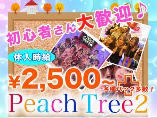 Peach Tree2 熊本松橋店/松橋町画像82767