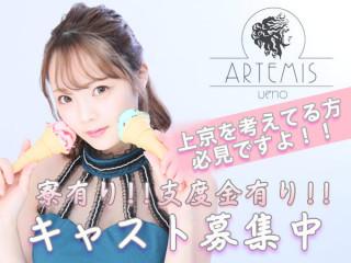 ARTENIS/上野画像58111