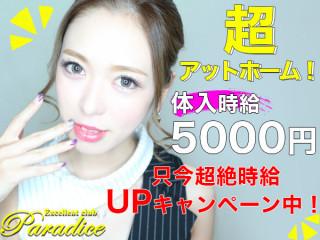 Paradice/太田画像50716